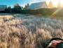 Mulčování trávy na stavební parcele ještě před zimou