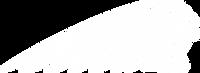 SeekPng.com_indian-headdress-png_1081052