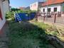 Kácení starých jabloní a přerostlích thují na zahradě na Suchdole v Praze