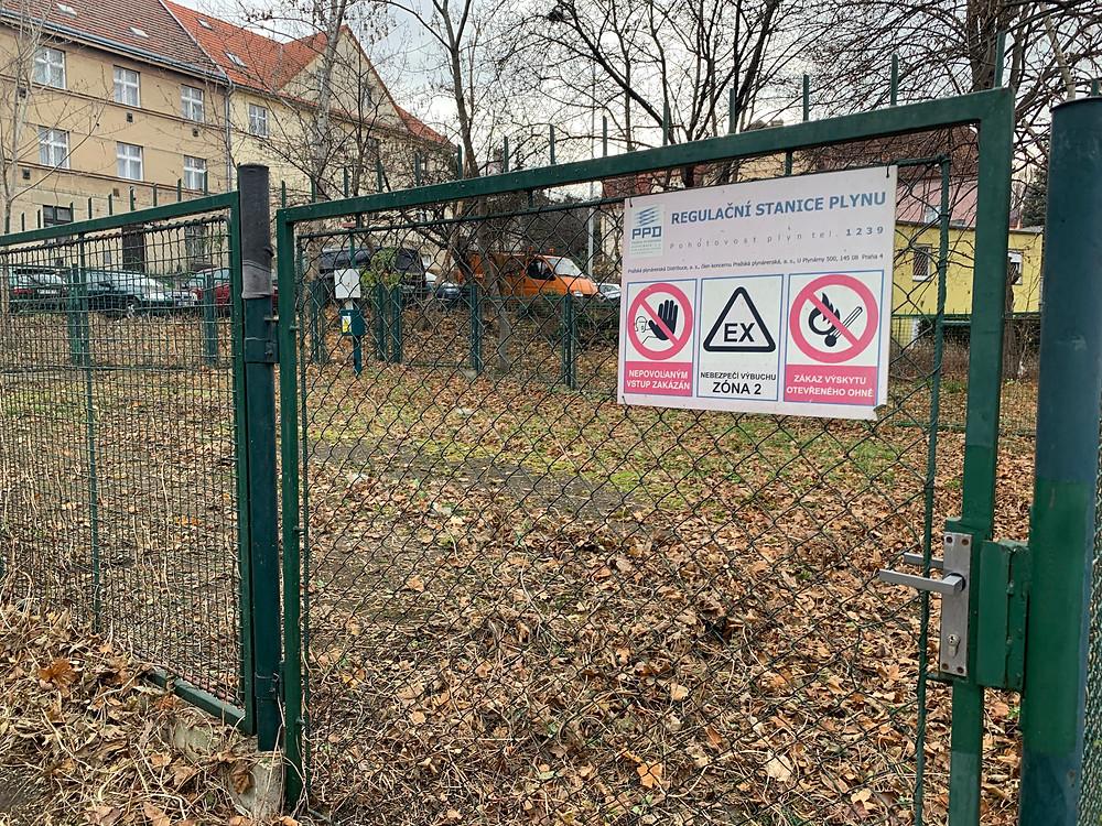 Vyčištění pozemku od náletových dřevin - frezujemeparezy.cz
