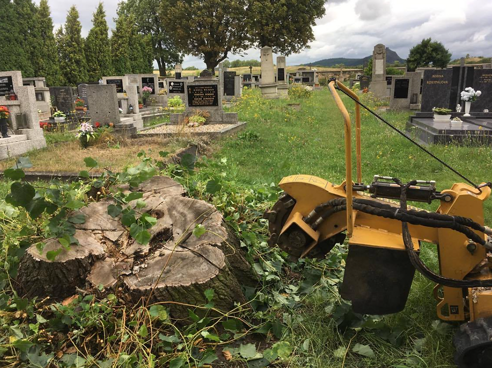 Dlažkovice likvidace pařezu hřbitov