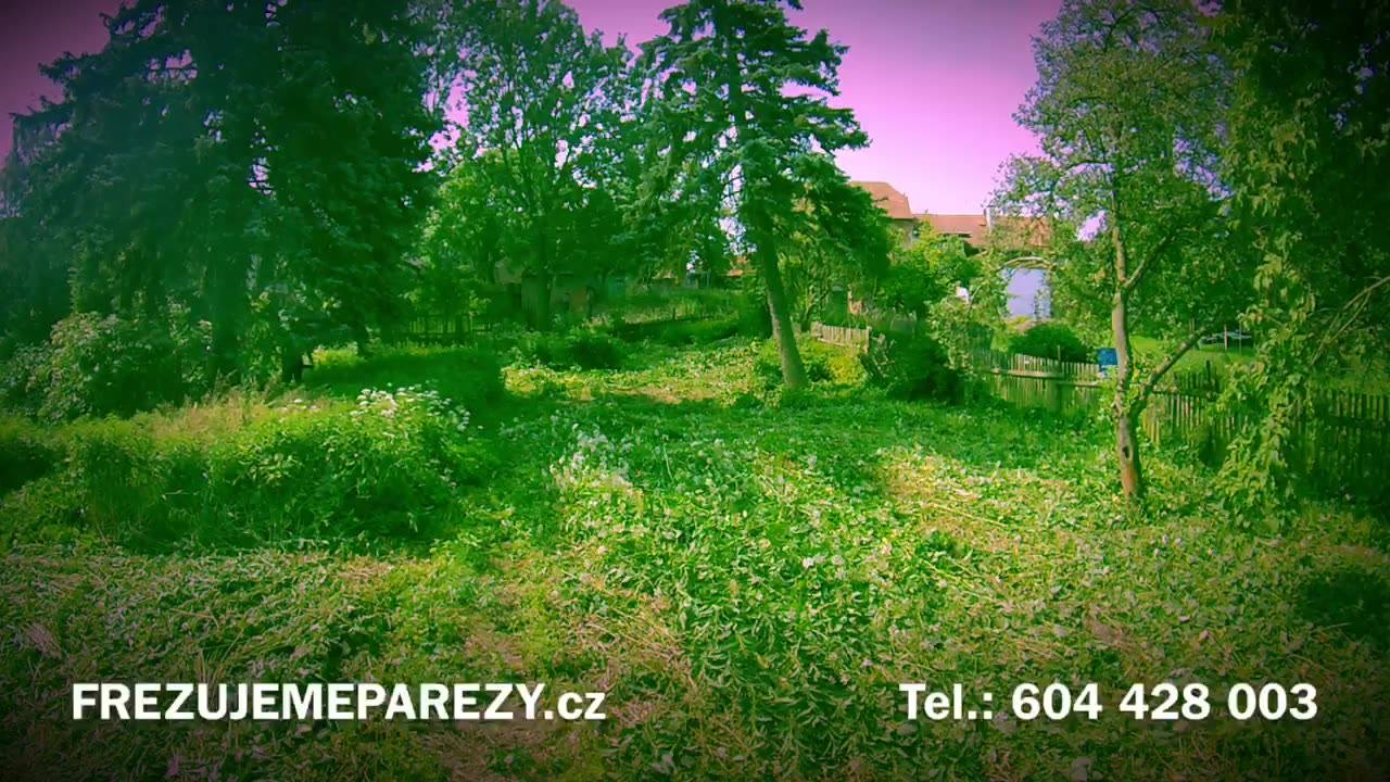 Nejen pařez umíme odstranit.  Jak naložit s dlouho neudržovanou zahradou?  Kontaktujte nás a posekáme a posečeme všem a vše.  www.frezujemeparezy.cz  #secemevsem #seceme #vsem #posekamevse #bubnovasekacka #vari