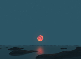 Moon What?!... Moon Cups save Mother Earth.