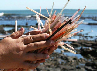 Have you thought about the last straw you used?