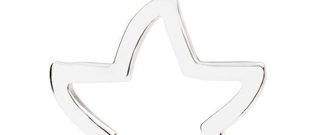 Stella silhouette argento