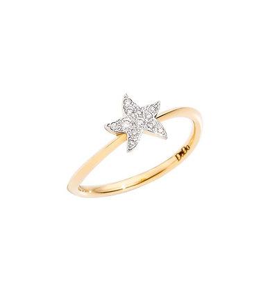 Anello stella piccolo