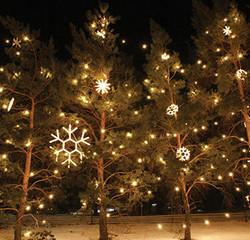 LED NEON SNOWFLAKE MOTIFS