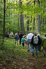 hardy hill trail walk 2.jpg