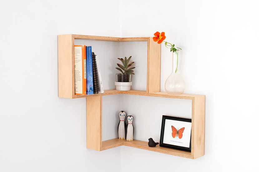 Corner Shelf / Shadow Box