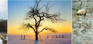 Winterexcursie Stika 2014