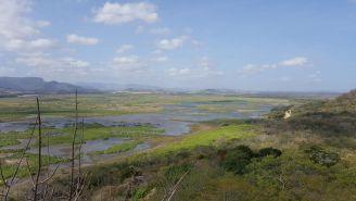 Vista de Laguna Palo Verde desde Mirador Cactus. Febrero, 2016.