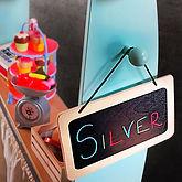 IMG_3691 fees silver_edited.jpg