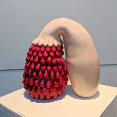 Cat Penis