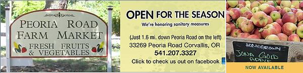Peoria Road Apple ad.PNG