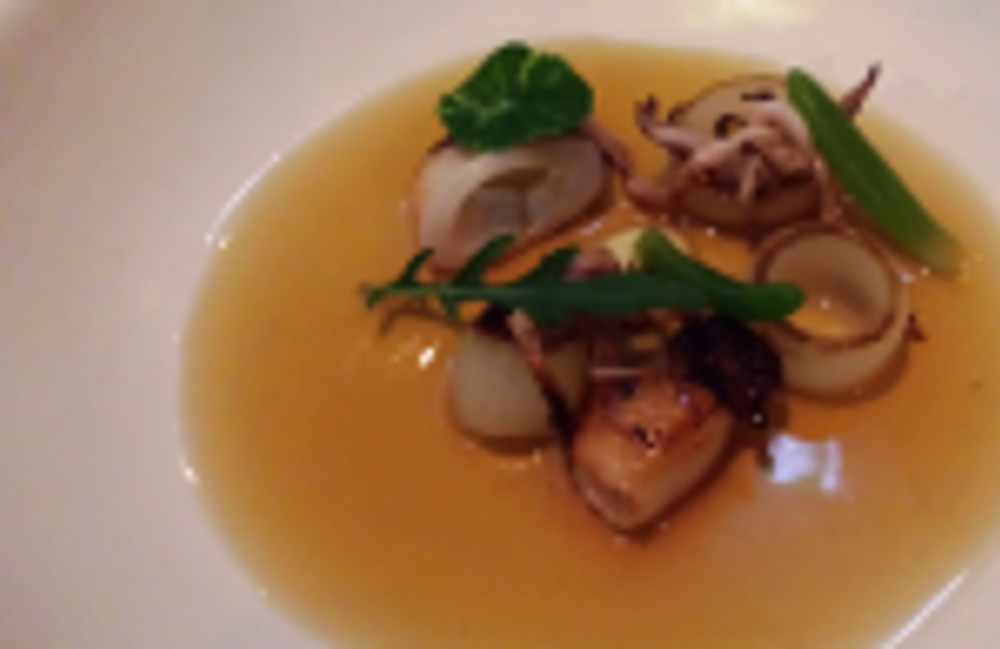 Squid and sea banana with caramelized onion