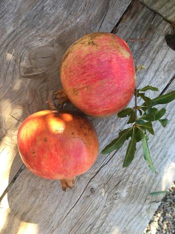 Freshly cut pomegranates