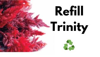Refill Trinity Repair Tonic  6oz