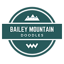 bailey mountain doodles (4).png