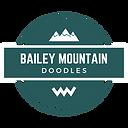 bailey mountain doodles (4).png