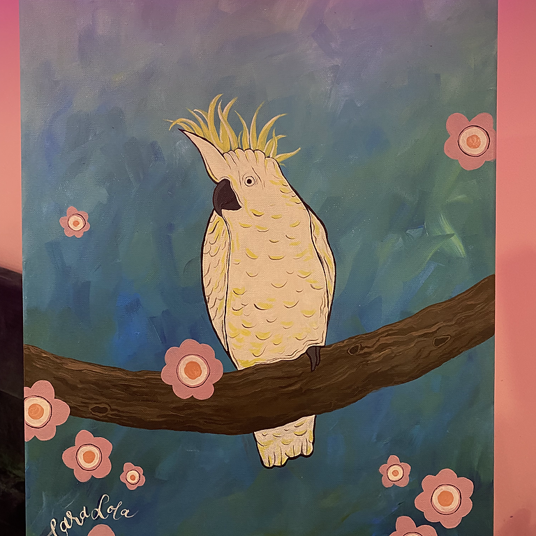 Barry the Cockatoo