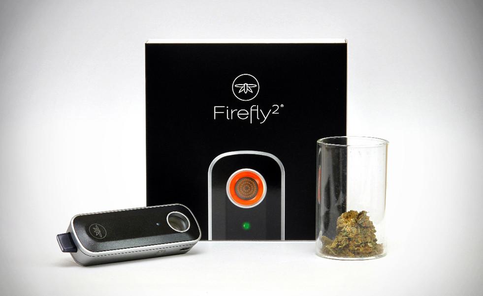 FIRE FLY2.jpg