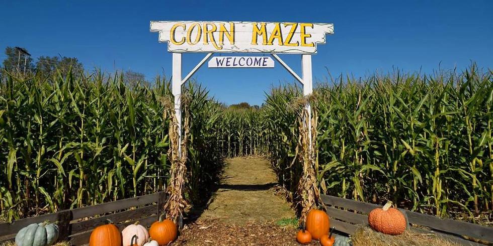 Corn Maze at Leader's Farm