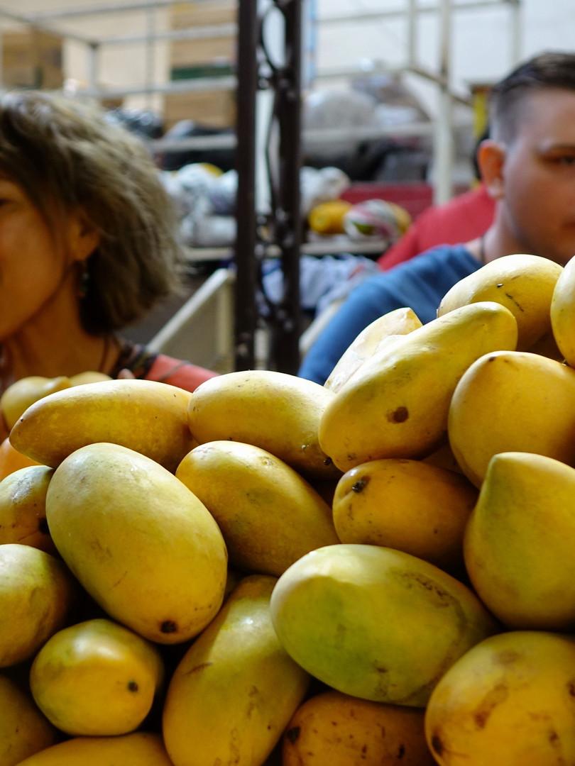 Yes it is mango season!