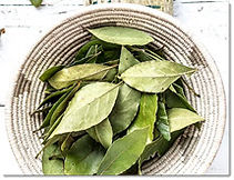 Herbal & Nutritional Consutations.jpg