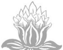 Tulip (Footer).jpg