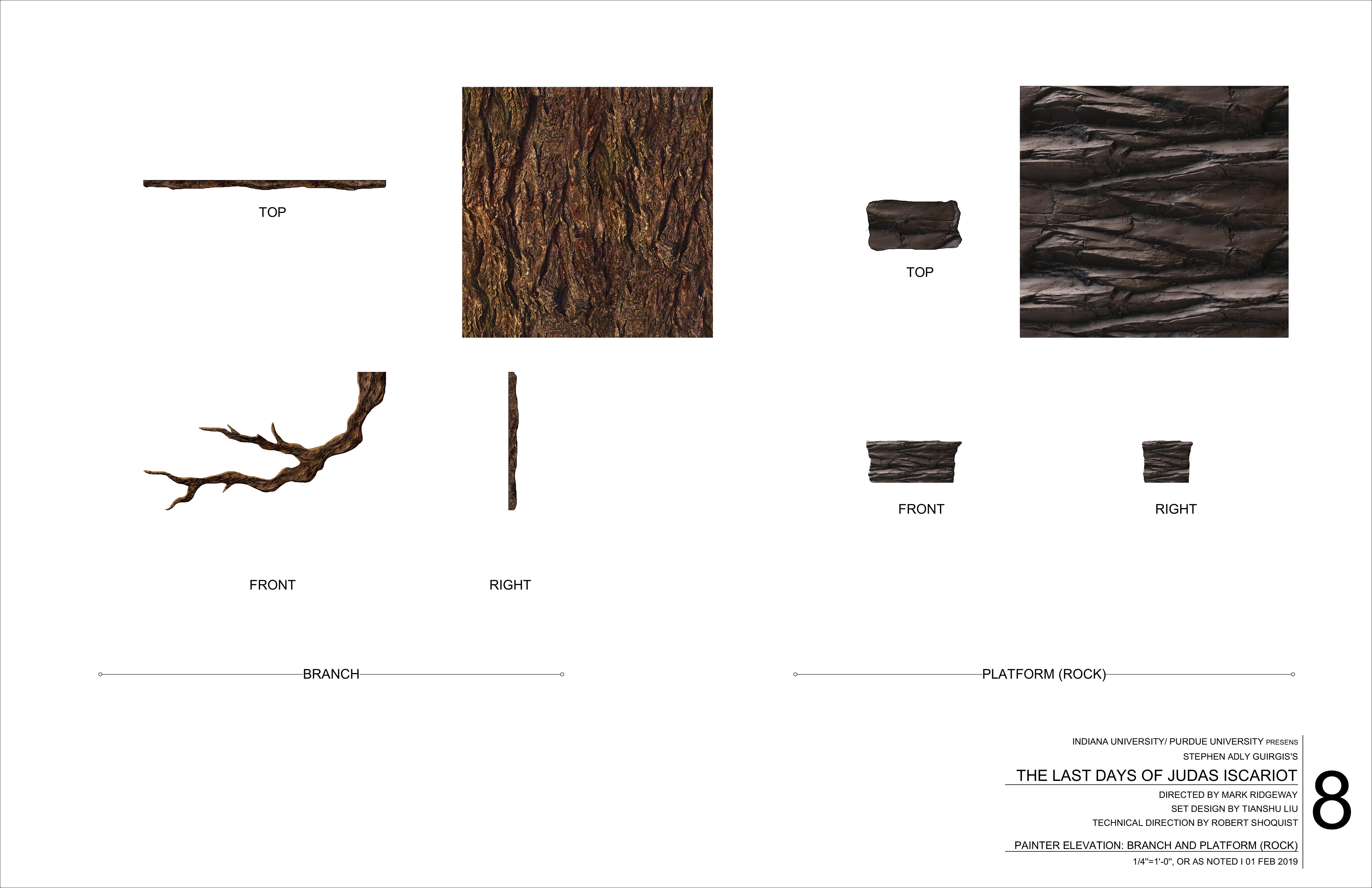 Branch and Rock Platform