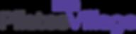 pv-2018-logo-medium.png