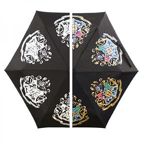 parapluie HP.jpg