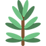 growth_icon.png
