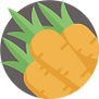 carrot_icon_sm.png