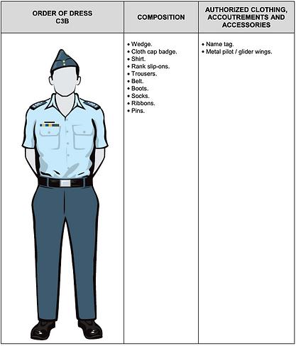 C3B Short Sleeve Service Dress.png