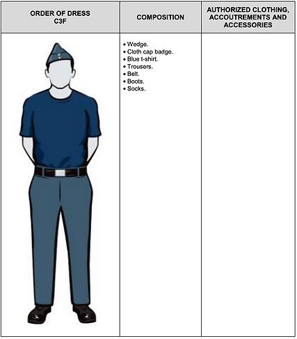C3F Blue T-Shirt Only Service Dress.png