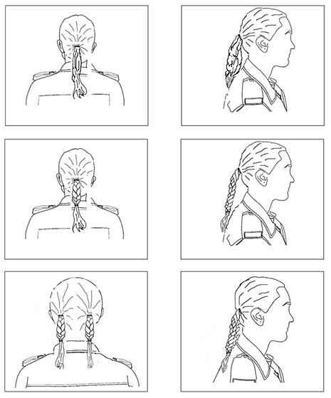 Female Hair Standards - Ponytail.png