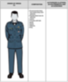 C2 Mess Dress.png