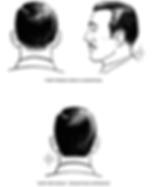 Male Hair Standards.png