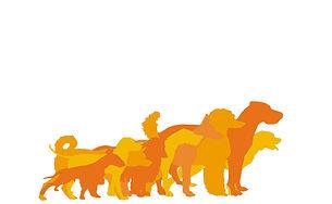 Ilustração com vários cães em tons de laranja