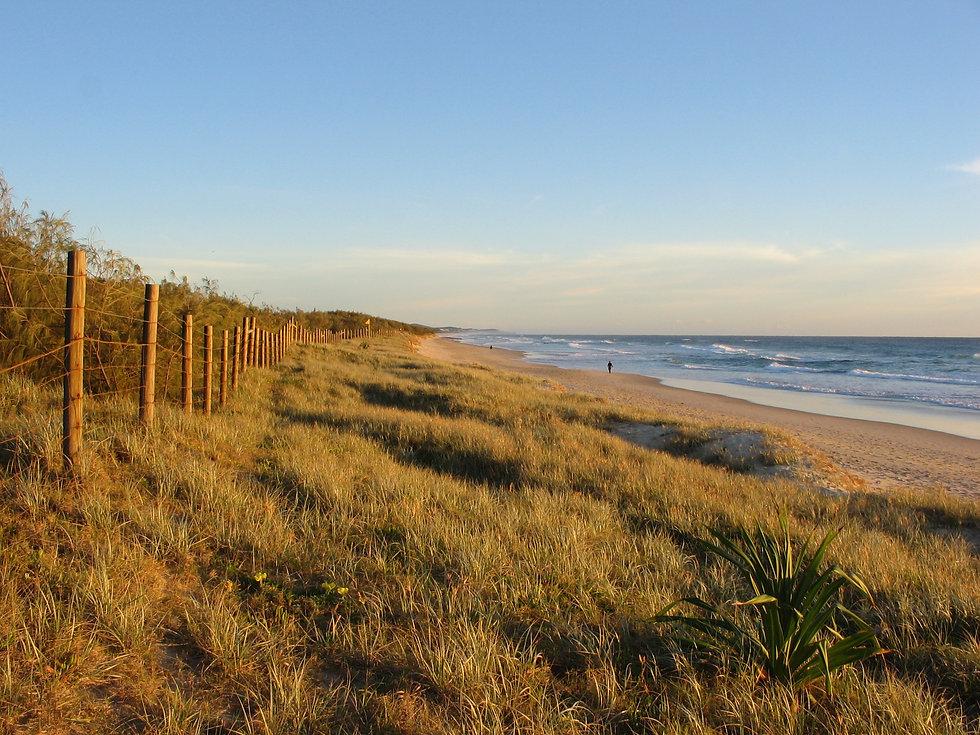 Coolum Coastal Dunes.jpg