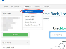 How to connect Domain that purchase from Exabytes to WIX.COM
