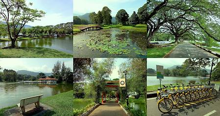 lake garden.png