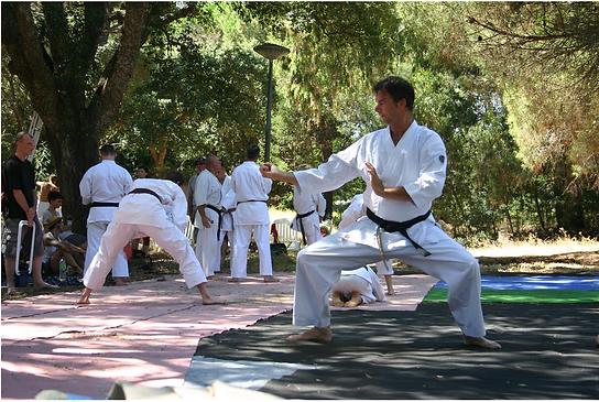 Karatelessen omgeving Oisterwijk, Hilvarenbeek, Tilburg