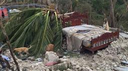 Hurricane Destroys All Paths