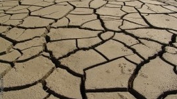 Haiti hit by the worst drought in 35 years