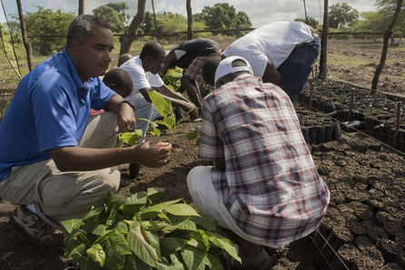 Haitian marine biologist wins environmental activism prize