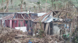Assessing the Damage - Food Security is the Highest Need