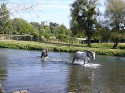 Decolmatage sur l'Huisne avec un cheval percheron