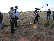 Fide Canem Lucas Project New Mexico Sear